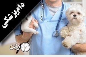 http://vierabon.com/wp-content/uploads/2018/07/دام-پزشکی-300x200.jpg